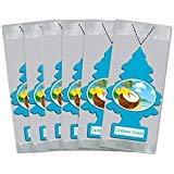 (Little Trees Car Air Freshener 6-Pack (Caribbean)