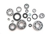 Bottom End Bearings (Boss Bearing H-CR250-BEBSK-92-01-4G8 Bottom End Bearings and Seals Kit Honda CR250R Engine 1992-2001)
