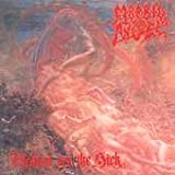 Blessed Are The Sick (Ltd) by Morbid Angel (2002-11-11)