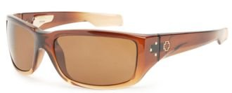 813b016e39 Image Unavailable. Image not available for. Colour  Spy Optics Sunglasses -  Nolen   Frame  Coconut Creme Fade Lens  Bronze Polarized