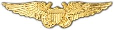 United States Navy Flight Officer Wings 3