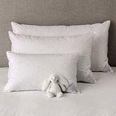-[ Hotel Linens Value 4 Pack Hollow Fibre Pillows Firm  ]-