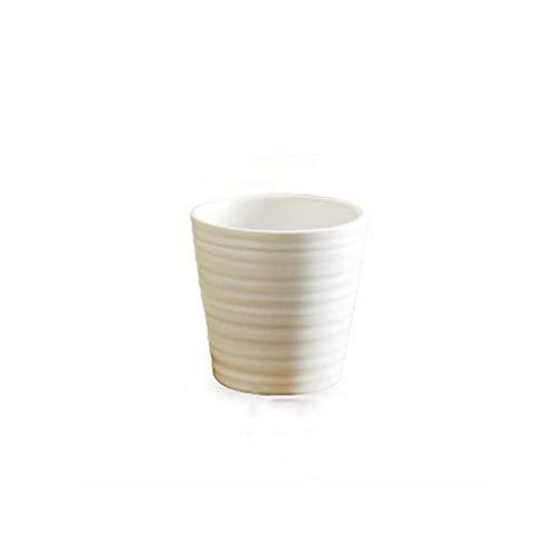 Pottery Patterned - Patterned White Pottery, White Succulent, Ceramic Pot, Green Potted Plant, Succulent Cactus Flower Pot/Plant Basin/Home Garden Office Desktop Decoration