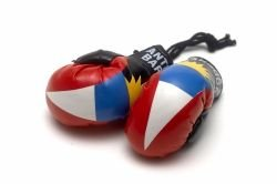 Antigua Country Flag Mini Boxing Gloves for Your Car or Automobile Mirror ... ()