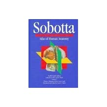 Sobotta Atlas of Human Anatomy: Thorax, Abdomen, Pelvis, Lower Limb (12th Eng ed. Vol 2) (1996-12-03)