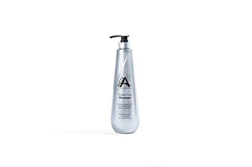 Professional Silk (Inova Professional Silk Keratin - Smooth Protection Sulfate-Free Shampoo, 27 Fluid Ounce)
