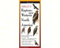 Steven M. Lewers Earth Sky Water LEWERSBPW127 Sibley's Raptors of Western N. America
