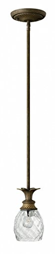 Hinkley 5317PZ Tropical/British Colonial One Light Pendant from Plantation collection in Bronze/Darkfinish, from Hinkley