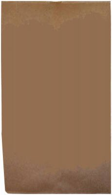 AMPAC TV1-6PL5 1/6 Natural Kraft Heavy Paper Sack (Pack o...