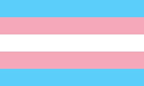 magFlags Large Flag Transgender Pride | The Transgender Pride flag was designed by Monica Helms | landscape flag | 1.35m² | 14.5sqft | 90x150cm | 3x5ft – 100% Made in Germany – long lasting