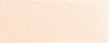 PanPastel Ultra Soft Artist Pastel, Burnt Sienna Tint