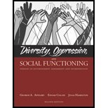 Diversity, Oppression & Social Functioning - Person-In-Environment Assessment & Intervention (2nd, 07) by Appleby, George A - Colon, Edgar A - Hamilton, Julia [Paperback (2006)]