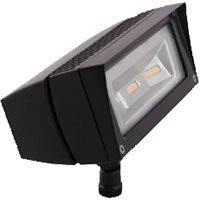 RAB Lighting FFLED18 Future Flood 18W Cool LED 120V to 277V Lamp, Bronze, Hardwired from RAB Lighting