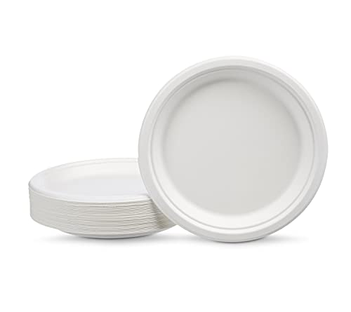Amazon Basics Compostable 9-Inch Plates, Pack of 125 9-Inch, White