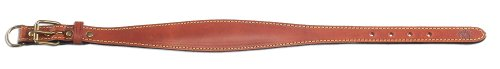 Petego La Cinopelca Padded Leather Whippet Collar Ideal for Short Haired Dogs, Brown, Fits 11 Inches to 12 Inches