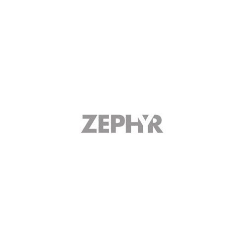 Zephyr Z1C-00SP Duct Cover Extension for Siena Pro Series Wall Mounted Range Hoo, Stainless Steel (Wall Mounted Duct Covers)