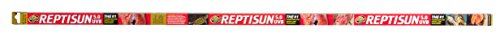 Recommended: ReptiSun 5.0 T5 UVB Tube Bulb