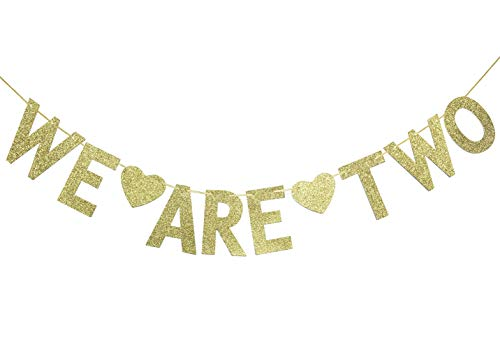Firefairy We are Two Gold Glitter Garland Bunting Banner, Twins' 2nd Birthday Party Decorations