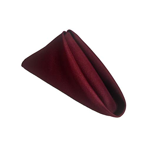 Excellent Designs Burgundy Polyester Cloth Dinner Napkins, Pack of 12 (18