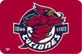 Wincraft NCAA Iowa State University Mat, Small/20