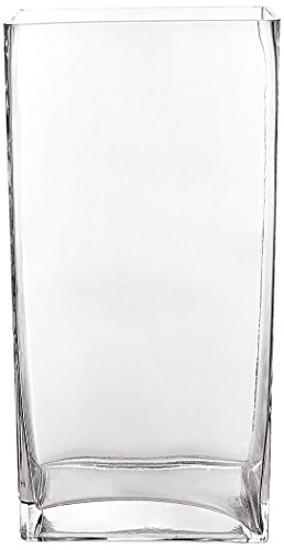(WGV Clear Rectangle Block Glass Vase, 4 by 6 by 12-Inch)