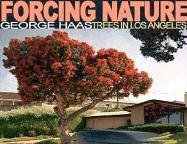 When most people think of Los Angeles, a sprawling city steeped in diversity and multi-culturalism, trees are rarely the first things to spring to mind. But the city landscape is virtually defined by its trees--all 150 officially approved varieties. ...