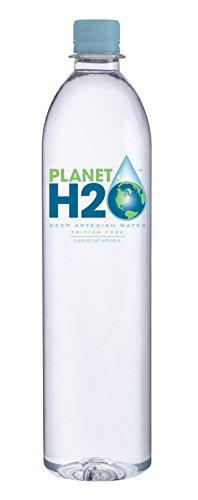 Planet H2O Natural Artesian 1 Liter Case (Water Drinking Alkaline)