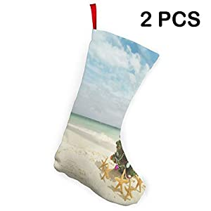 31%2B2CiSVuaL._SS300_ 100+ Beach Themed Christmas Stockings For 2020