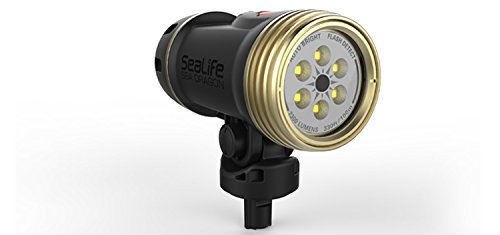 (SeaLife SL6740 Sea Dragon 2300 UW Photo/Video LED Dive Light (Head Only))
