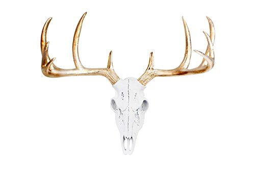 - Wall Charmers Large White + Gold Antler Faux Deer Skull - 21