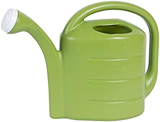 product image for Novelty 30413 2 Gallon Deluxe Watering Can, Green
