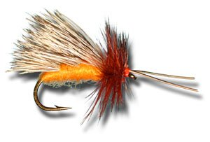 - October Caddis Dry Fly Fishing Fly - Size 10 - 12 Pack
