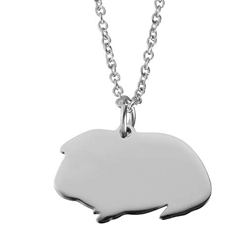 - Haoflower Guinea Pig Necklace Sterling Silver Guinea Pig Gift Personalized Animal Charm Cute Pet Unique Gift Jewelry Animal Pendant Cavy