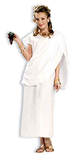 Funny Toga Costumes (Forum Novelties Costume Toga, White,)