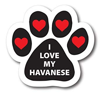NGK Trading I Love My Havanese Pawprint Car by Me Up Paw Print Auto Truck Decal Magnet 1