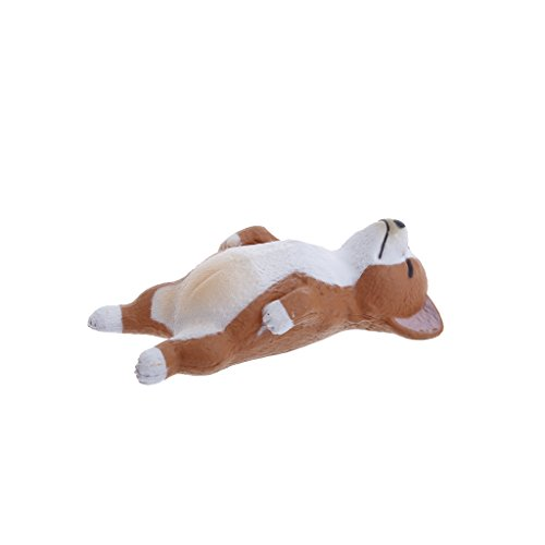 Hunulu Animal Fridge Magnet Cute Kawaii Sleeping Animals Refrigerator Photo Sticker Gift Collectibles (Corgi) (Collectible Magnet)