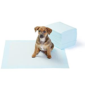 Amazon-Basics-Pet-Training-and-Puppy-Pads
