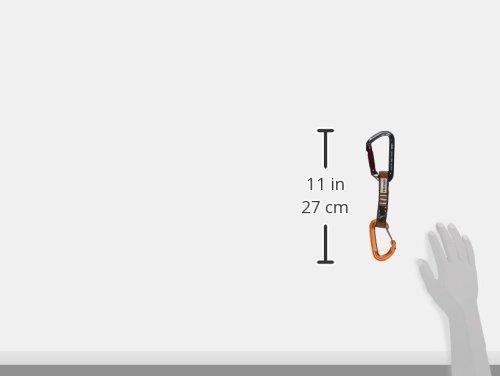 Fusion Contigua/Techno Zoom Quickdraw Carabiner (Set of 6)
