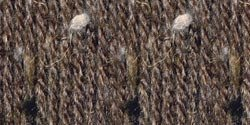 - Lion Brand Vanna's Choice Bulk Buy Yarn (3-Pack) Barley 860-403