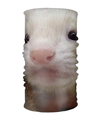 Neck Gaiter Headband Cute Ferret Bandana - Multifunctional Breathable Seamless Microfiber
