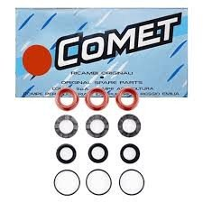 Seal Kit for LWD, LWS Series Pumps, 2500 PSI (Comet Pressure Washer Pump Parts)