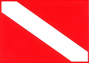 Russia in Russian and Russian Flag Car Bumper Sticker Decal Oval