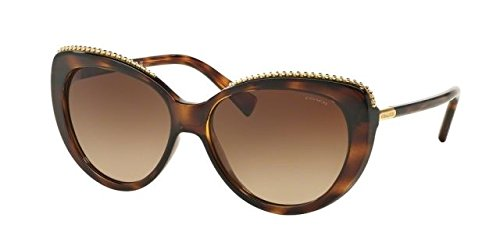 COACH HC8157 - Us Contact Hut Sunglass