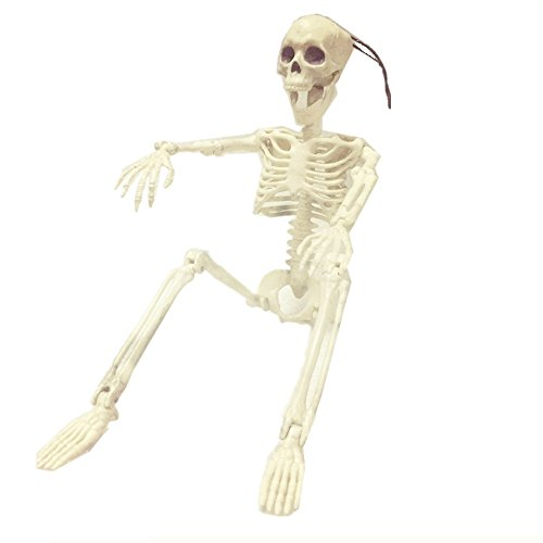 EALUN 15'' Posable Skeleton Halloween Decorations Creepy Decor Party Props Scary Man Bone Plastic 38x12CM by EALUN