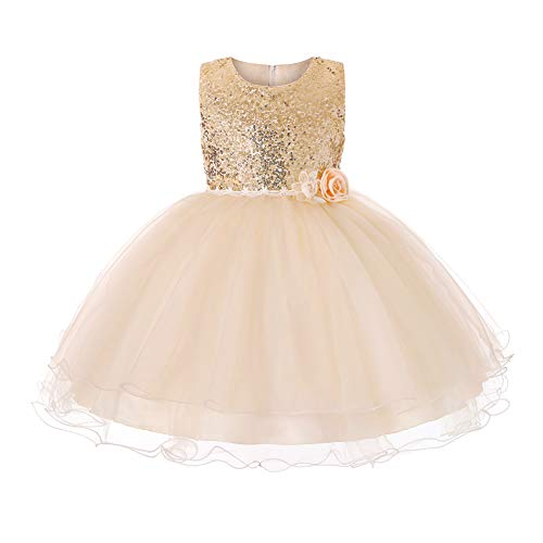 JiaDuo Baby Girl Lace Mesh Tutu Dress Sequin Bow Toddler Princess Gown (3-4 Years, Champagne)