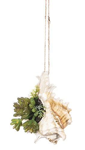 Sullivans Artificial Hanging Succulent in Seashell
