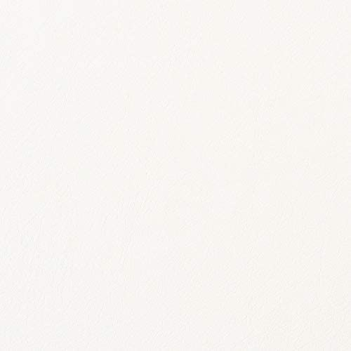 壁紙 リアテック カッティングシート リメイクシート リフォーム DIY 内装 革 レザー 白 ホワイト 巾122cm×10cm単位 STC-4501