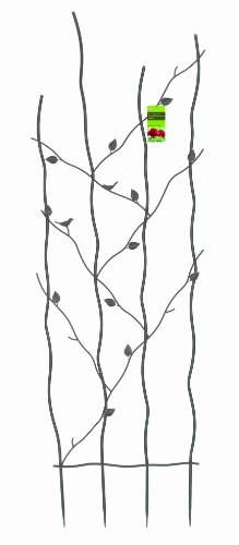 - Gardman R543 Nature Metal Trellis, 24