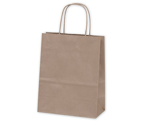 ABC Tempo Kraft Paper Gift Bag, 8 x 4.5 x 10.25, Natural Brown - 250 Bags