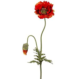 "Flame Orange Poppy Artificial Flower - 35.5"" Tall 118"